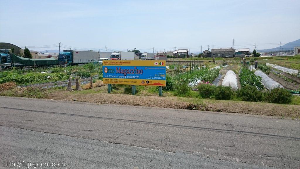 向かいに農園