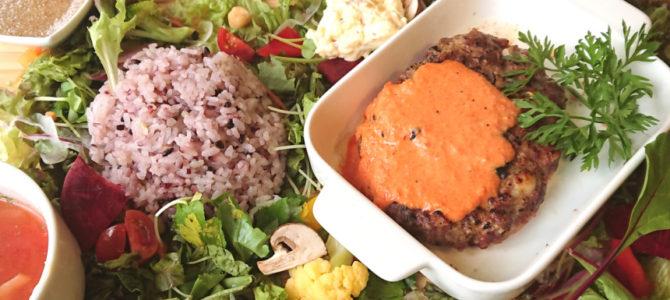 「ライク ナチュラル」旨味食堂 べじ吉 炙りハンバーグ 250g 赤色野菜ソース